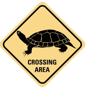 Crossing1L