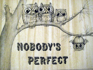 Image result for Nobody is perfect